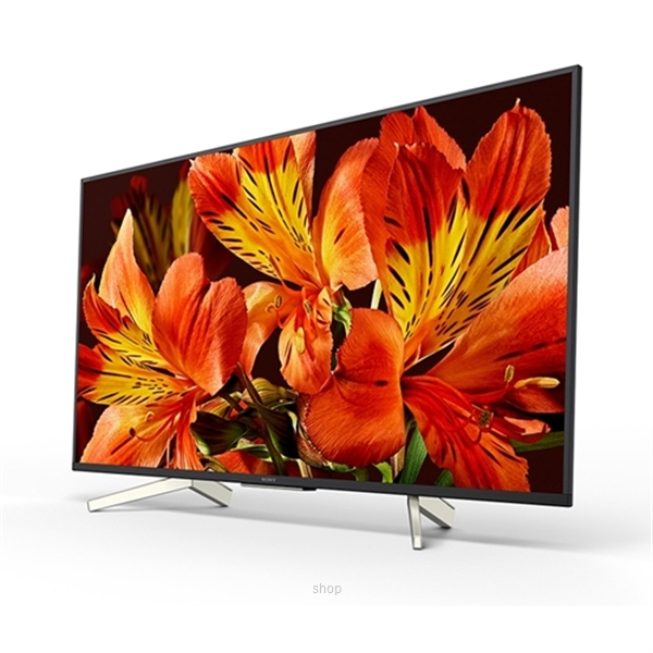 Sony 85 Inch Professional TV 4K Color LED Display - FW-85BZ35H-0