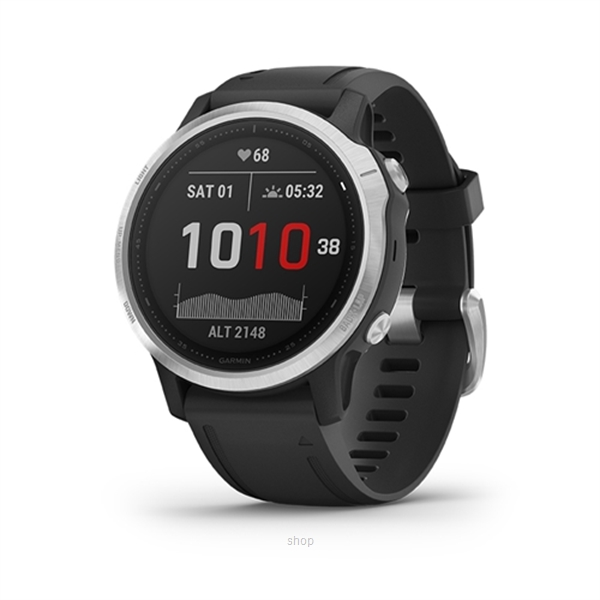 Garmin Fenix 6s Silver with Black Band Running Smartwatch - 010-02159-5F-0