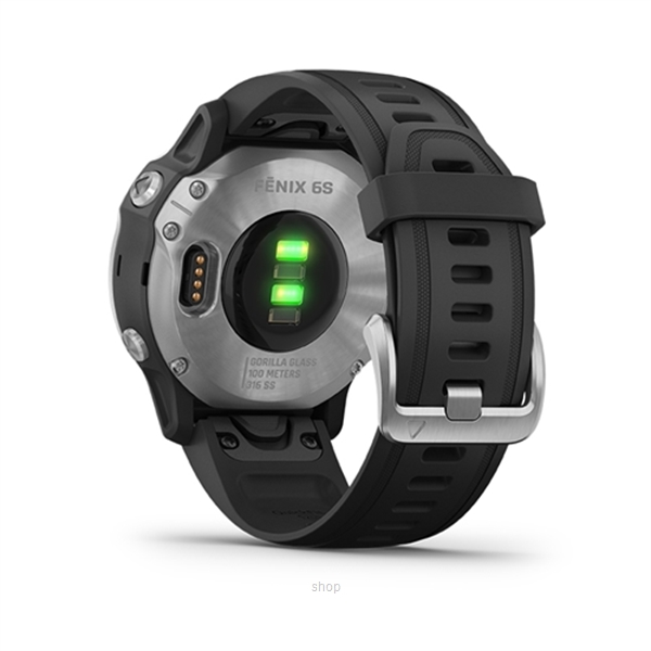 Garmin Fenix 6s Silver with Black Band Running Smartwatch - 010-02159-5F-2